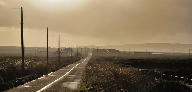 Road in irish winter sun.